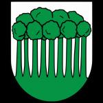 Erb obce Povina